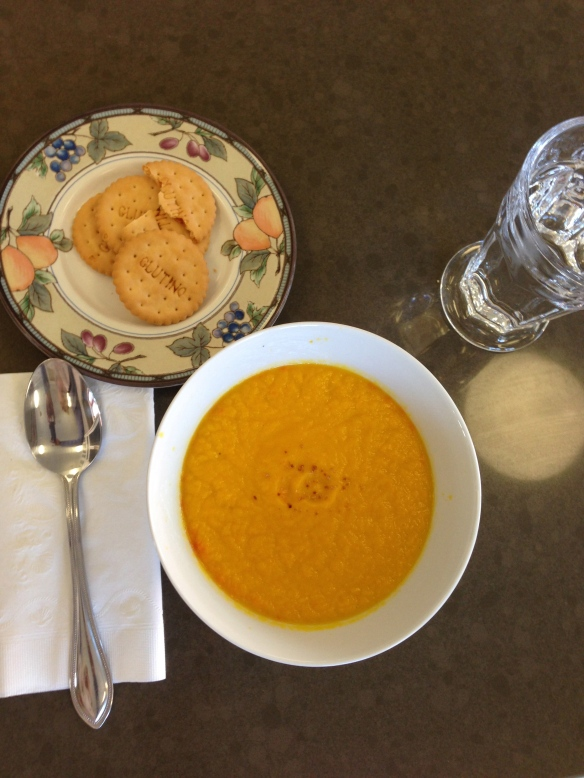 Anita's Pro 750 Carrot-Orange Soup