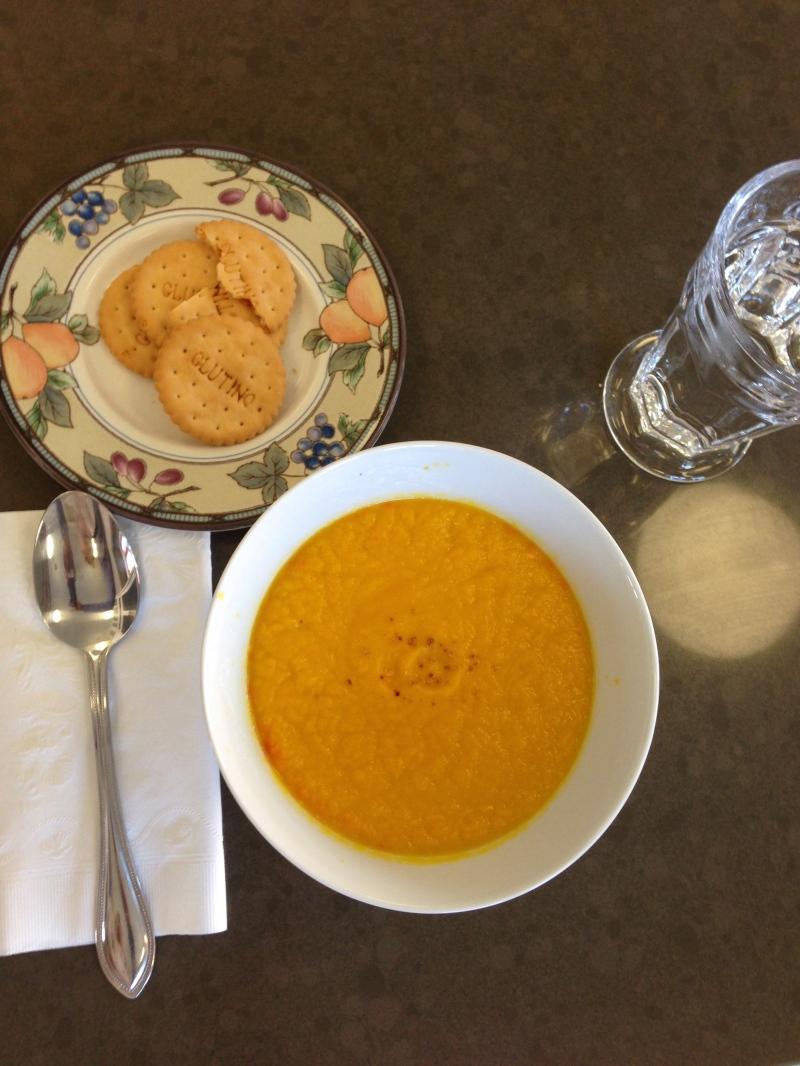 Anita's Pro 750 Carrot-Orange Soup